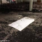 Bexley Mold Remediation