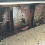 BOCA RATON RESIDENTIAL MOLD REMEDIATION AND RENOVATION