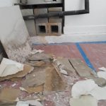 MOLD DAMAGE CLEANUP JOB PERFORMED IN BOCA RATON