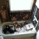 Mold Damage in Jacksonville Bathroom  This homeowner began to