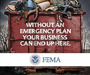 FEMA-2-300×250