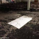 Bexley Mold Remediation