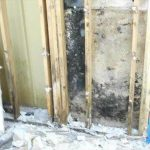 Boynton Beach Mold Problem Getting Remediated