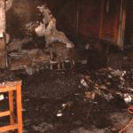 Fire Damage – Arlington, FL School