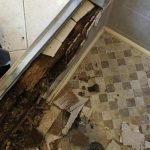 BOYNTON BEACH BATHROOM MOLD DAMAGE REPAIR
