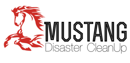 Mustang Disaster CleanUp of Rapid City