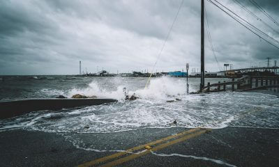 storm damage wind