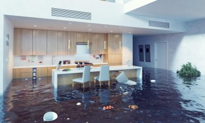 Effects of Water Damage